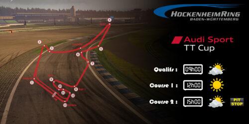 Audi TTcup 2016 RaceRoom Hockenheim 14-02-2017