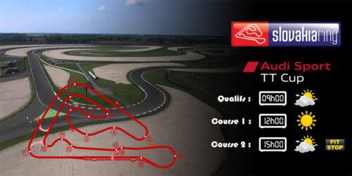 Audi TTcup 2016 RaceRoom Slovakiaring 06-06-2017