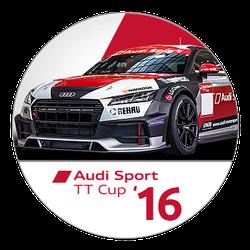 #3 Championnat Audi TTcup 2017 SimRacing France