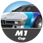 Setup BMW M1 Procar Raceroom Racing Experience