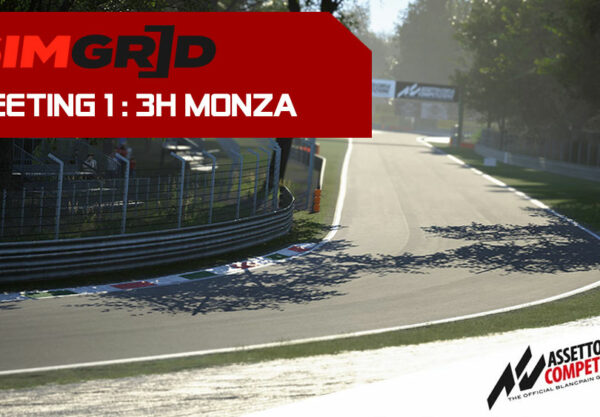 SimGrid Endurance Cup 2020 Monza